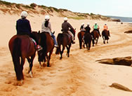 all-day-horse-ride-mornington-peninsula