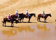 beach-bathe-horse-riding-gunnamatta-trail-rides