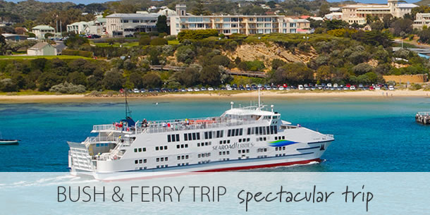 spectacular-searoad-ferry-bush-package