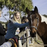 Introduction to horse riding