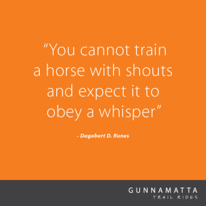 GTR_Horse_Quotes_14