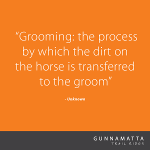 GTR_Horse_Quotes_18