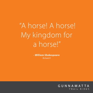 GTR_Horse_Quotes_24