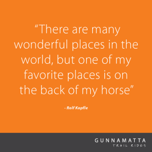 GTR_Horse_Quotes_27