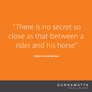 GTR_Horse_Quotes_3