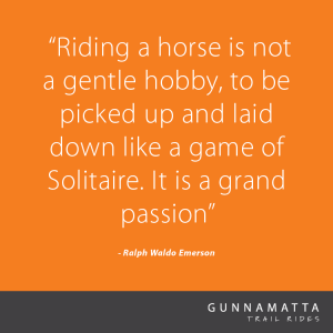 GTR_Horse_Quotes_30
