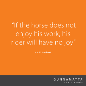 GTR_Horse_Quotes_42