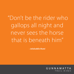 GTR_Horse_Quotes_44