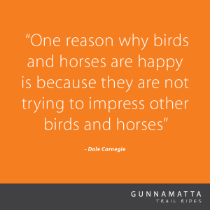 GTR_Horse_Quotes_48