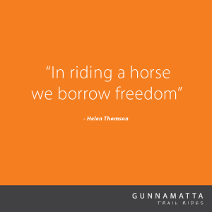 GTR_Horse_Quotes_5