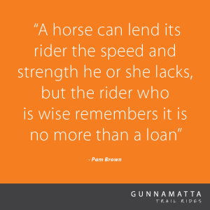 GTR_Horse_Quotes_6
