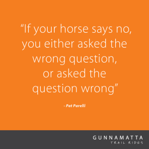 GTR_Horse_Quotes_7