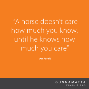 GTR_Horse_Quotes_8