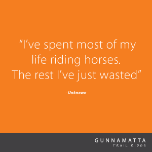 GTR_Horse_Quotes_9