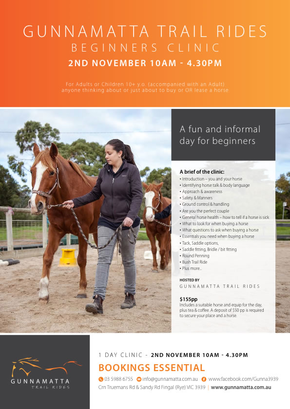 GTR_Beginners_Clinic_Horse_Riding_November_r1_c1
