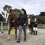 horse riding lessons mornington peninsula activities