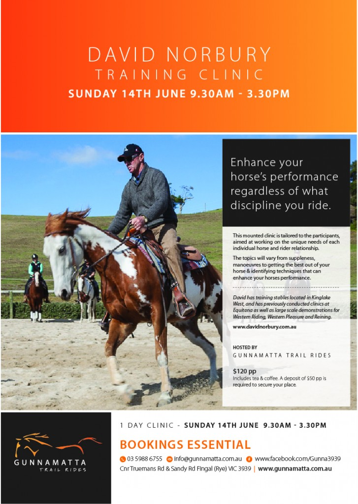 GTR_David_Norbury_Clinic_Horse_Riding_JUNE 14th  2015-final