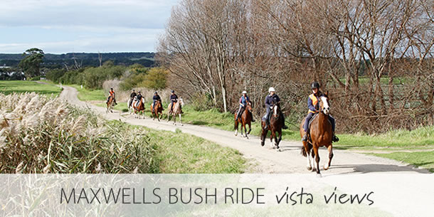 maxwells-bush-ride-mornington-peninsula