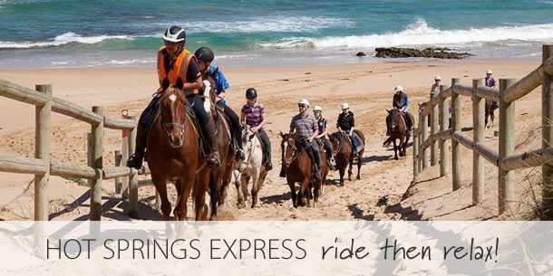 hot-springs-express-beach-horse-ride-mornington-peninsula