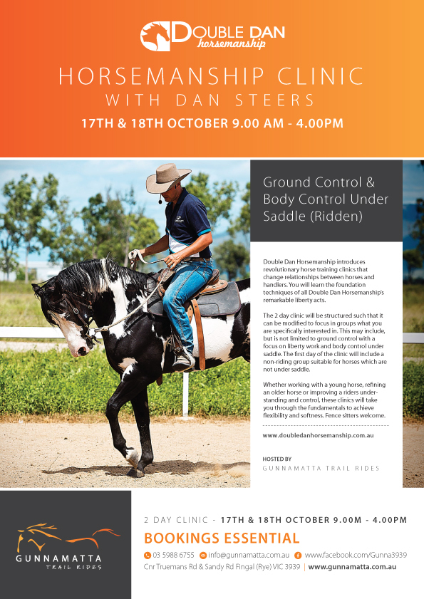 horse-CLINIC STEERS GUNNAMATTA OCT 2015_r1_c1